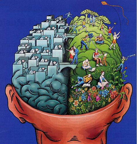 cerebro derecho e izquierdo